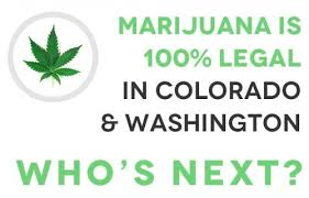 Cannabis Colarado