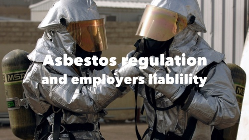 Dutch Law Firm Employers Liability Asbestos